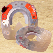 Particularly Solid Horseshoes (HDS)