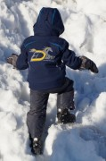 Winter Softshell Jacket (Children) - 146/152