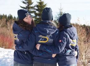 Winter Softshell Jacket (Ladies)